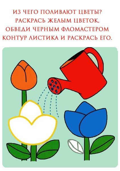 Раскраски для детей 2-3 лет. Цветы