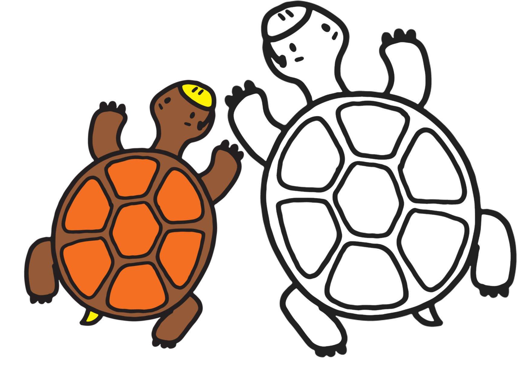 Забавные животные. Раскраски для самых маленьких скачать