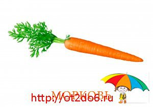 Карточки овощи
